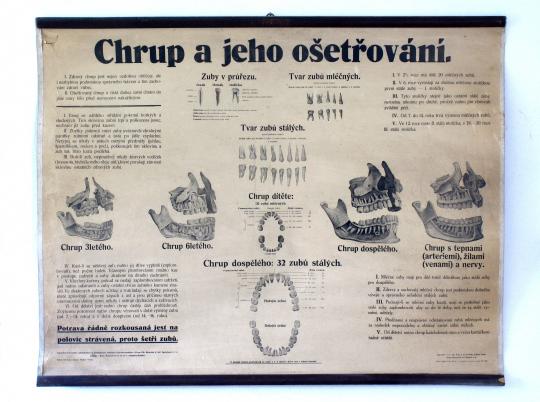 Plakát Chrup a jeho ošetřování